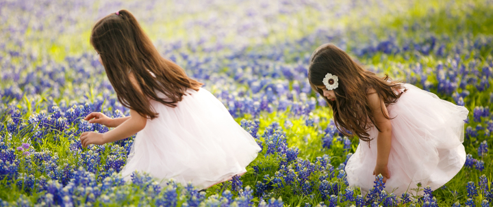 tx blue bonnets-10